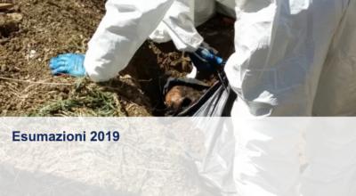 Operazione di Esumazione Ordinarie, anno 2019 – Avviso