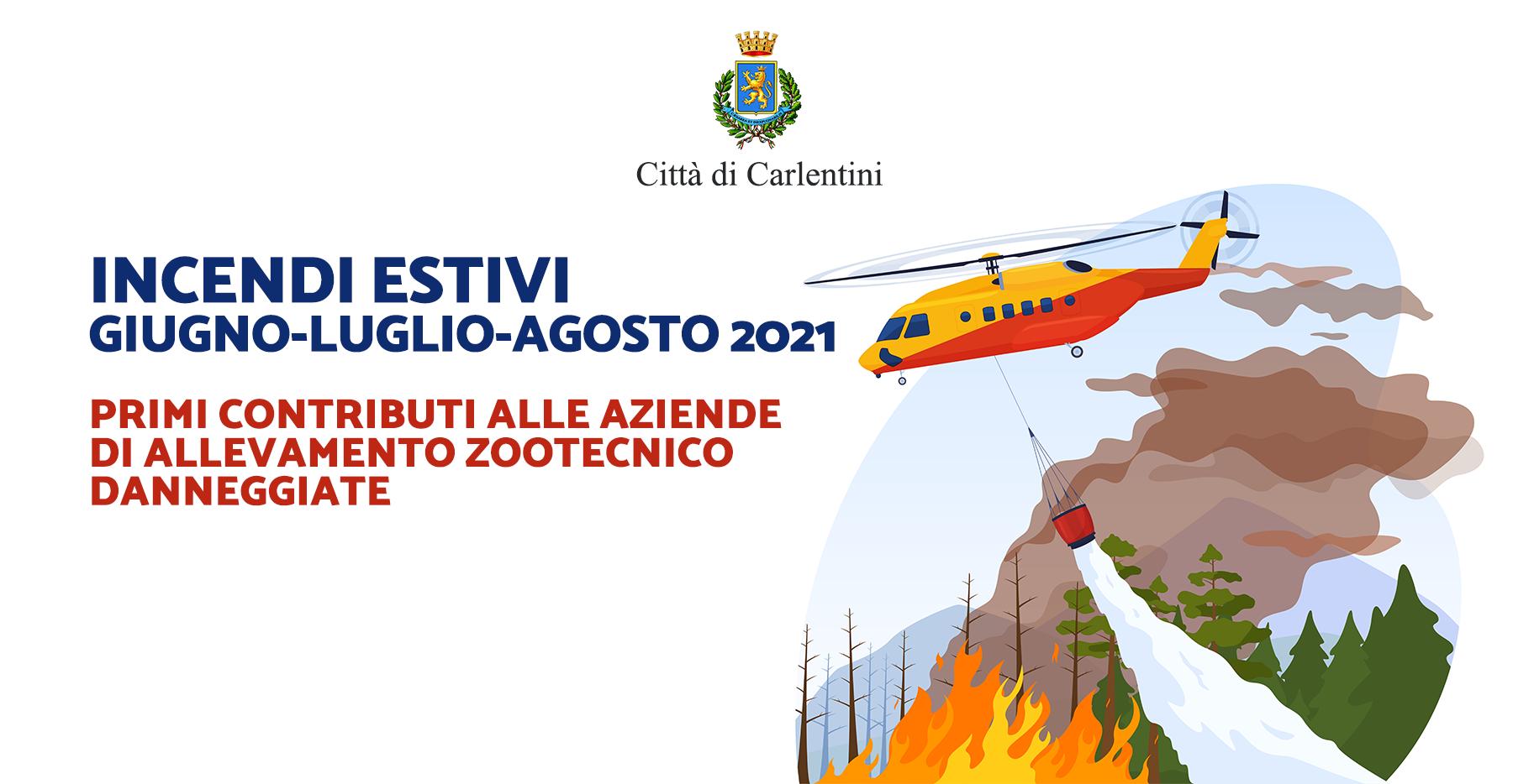 Incendi estivi mesi di giugno, luglio, agosto 2021: criteri e modalità di erogazione dei primi contributi alle aziende di allevamento zootecnico danneggiate